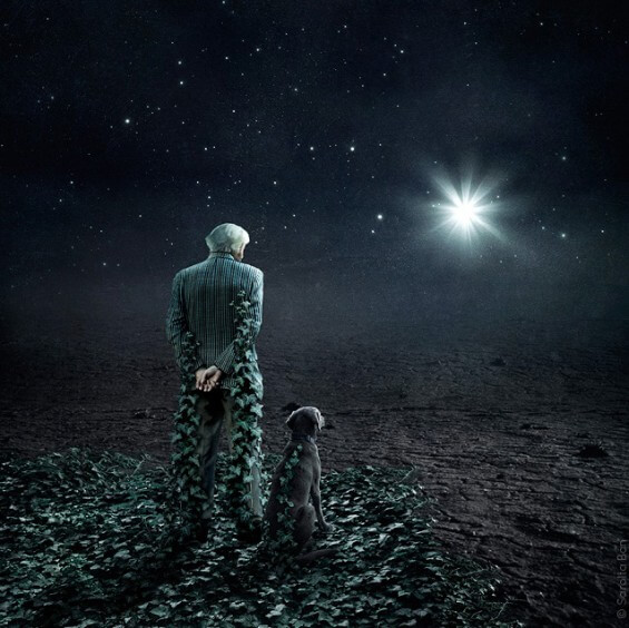 Old man and dog encapsulated by green leaves looking at the sky